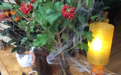 Floral Dance – Halloween Flowers and Displays
